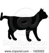 Vector Illustration of a Cat Silhouette by AtStockIllustration