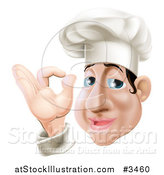 Vector Illustration of a Chubby Chef Gesturing Ok by AtStockIllustration