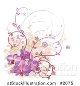 Vector Illustration of a Corner Design Element of Purple Orchid Flowers, Vines and Grunge by AtStockIllustration