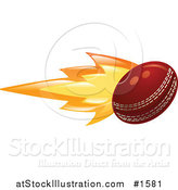 Vector Illustration of a Cricket Ball on Fire by AtStockIllustration