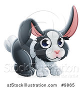 Vector Illustration of a Dutch Bunny Rabbit by AtStockIllustration
