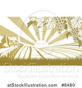 Vector Illustration of a Farm House and Rolling Hills with Winery Grape Vines and Sun Rays in Green and White by AtStockIllustration