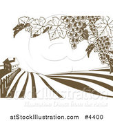 Vector Illustration of a Farm House and Rolling Hills with Winery Grape Vines in Brown and White by AtStockIllustration