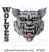 Vector Illustration of a Ferocious Gray Wolf Mascot Head and Text by AtStockIllustration