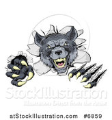 Vector Illustration of a Ferocious Gray Wolf Slashing and Breaking Through a Wall by AtStockIllustration