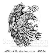 Vector Illustration of a Fierce Black and White Eagle Attacking by AtStockIllustration