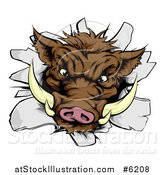 Vector Illustration of a Fierce Brown Boar Head Breaking Through a Wall by AtStockIllustration