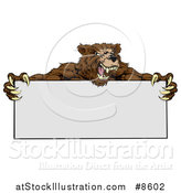 Vector Illustration of a Fierce Buff Muscular Grizzly Bear Man Holding a Blank Sign by AtStockIllustration