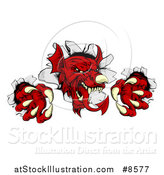 Vector Illustration of a Fierce Red Welsh Dragon Mascot Breaking Through a Wall by AtStockIllustration