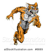 Vector Illustration of a Fierce Roaring Muscular Running Tiger Man Mascot by AtStockIllustration