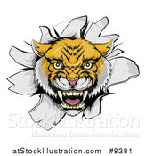 Vector Illustration of a Fierce Wildcat Mascot Head Roaring and Breaking Through a Wall by AtStockIllustration