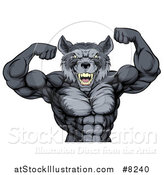 Vector Illustration of a Firece Muscular Gray Wolf Man Mascot Flexing His Muscles, from the Waist up by AtStockIllustration