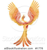 Vector Illustration of a Golden and Red Phoenix Bird Crowing and Stretching Its Wings by AtStockIllustration