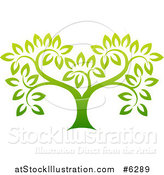 Vector Illustration of a Gradient Green Tree by AtStockIllustration