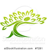 Vector Illustration of a Gradient Green Tree Man by AtStockIllustration