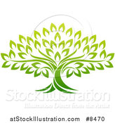 Vector Illustration of a Gradient Mature Green Tree by AtStockIllustration