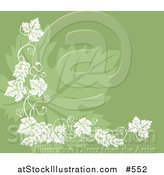 Vector Illustration of a Grapevine Accent over a Grape Leaf on Green by AtStockIllustration