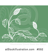Vector Illustration of a Green and White Floral Background by AtStockIllustration