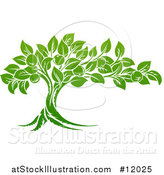 Vector Illustration of a Green Apple Tree by AtStockIllustration