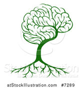 Vector Illustration of a Green Brain Tree and a Roots by AtStockIllustration