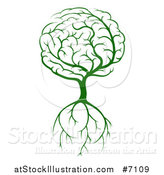 Vector Illustration of a Green Brain Tree with a Roots by AtStockIllustration