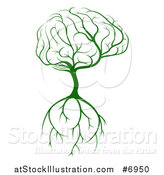 Vector Illustration of a Green Tree with a Big Brain Canopy and Roots by AtStockIllustration