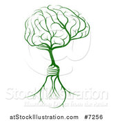 Vector Illustration of a Green Tree with Light Bulb Roots and a Brain Canopy by AtStockIllustration