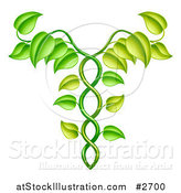 Vector Illustration of a Green Vine Forming an Alternative Medicine Caduceus by AtStockIllustration