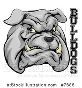 Vector Illustration of a Growling Gray Aggressive Bulldog Mascot Face with Text by AtStockIllustration