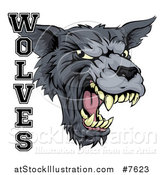 Vector Illustration of a Growling Gray Wolf Mascot Head and Text by AtStockIllustration