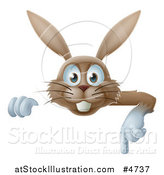 Vector Illustration of a Happy Brown Rabbit Pointing down at a Sign by AtStockIllustration