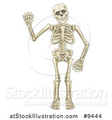 Vector Illustration of a Happy Cartoon Skeleton Character Waving by AtStockIllustration