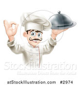 Vector Illustration of a Happy Gourmet Male Chef Holding a Platter and Gesturing Ok by AtStockIllustration