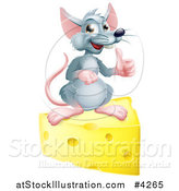 Vector Illustration of a Happy Gray Mouse Holding a Thumb up on a Block of Cheese by AtStockIllustration