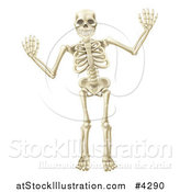 Vector Illustration of a Happy Skeleton Waving with Both Hands by AtStockIllustration