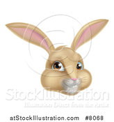 Vector Illustration of a Happy Tan Easter Bunny Rabbit Face by AtStockIllustration