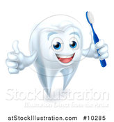 Vector Illustration of a Happy White Tooth Mascot Holding a Toothbrush and Giving a Thumb up by AtStockIllustration