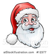 Vector Illustration of a Jolly Christmas Santa Claus Face by AtStockIllustration