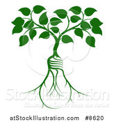 Vector Illustration of a Leafy Heart Shaped Tree Growing from Light Bulb Shaped Roots by AtStockIllustration