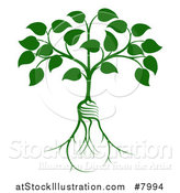 Vector Illustration of a Leafy Heart Shaped Tree with Light Bulb Shaped Roots by AtStockIllustration