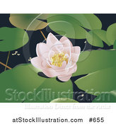 Vector Illustration of a Lotus Flower and Lily Pads by AtStockIllustration