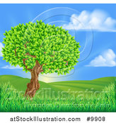 Vector Illustration of a Lush Tree in a Beautiful Hilly Country Landscape at Sunrise by AtStockIllustration