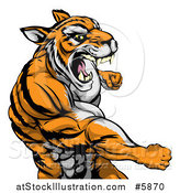 Vector Illustration of a Mad Muscular Tiger Man Punching by AtStockIllustration