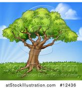 Vector Illustration of a Mature Tree on a Grassy Hill Against a Blue Sky by AtStockIllustration