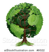 Vector Illustration of a Mature Tree with Planet Earth Shaped Continents by AtStockIllustration