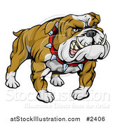 Vector Illustration of a Mean and Muscular Bulldog Growling by AtStockIllustration