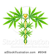 Vector Illustration of a Medical Marijuana Design with a Cannabis Plant Growing on a Gold Caduceus by AtStockIllustration