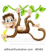 Vector Illustration of a Monkey Hanging from a Vine and Holding a Banana by AtStockIllustration