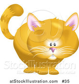 Vector Illustration of a Orange Cat by AtStockIllustration