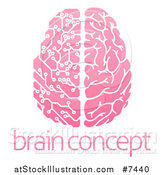 Vector Illustration of a Pink Half Human, Half Artificial Intelligence Circuit Board Brain over Sample Text by AtStockIllustration